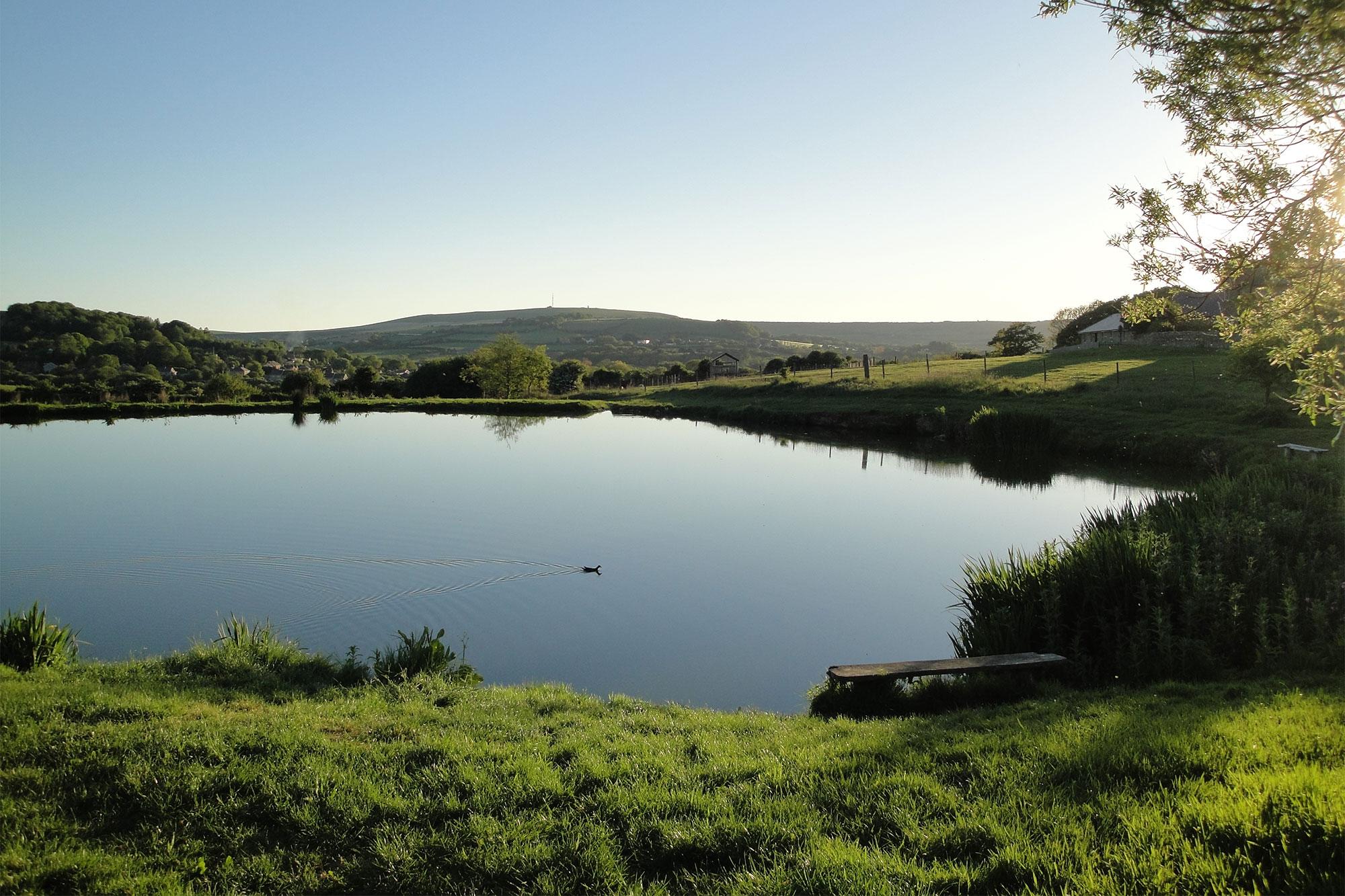 Nettlecombe Farm fishing lakes